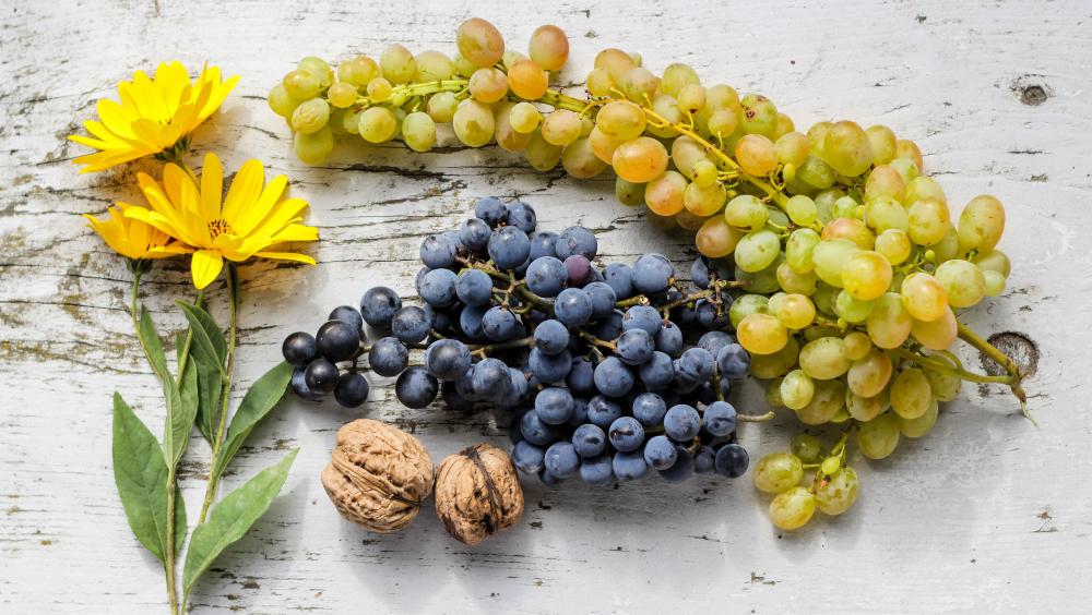 Elegir el mejor sérum antioxidante